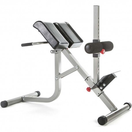 Roman Chair with Hyperextension  44716